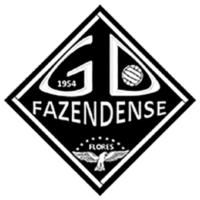Grupo Desportivo Fazendense